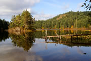 Matheson Lake island reflection